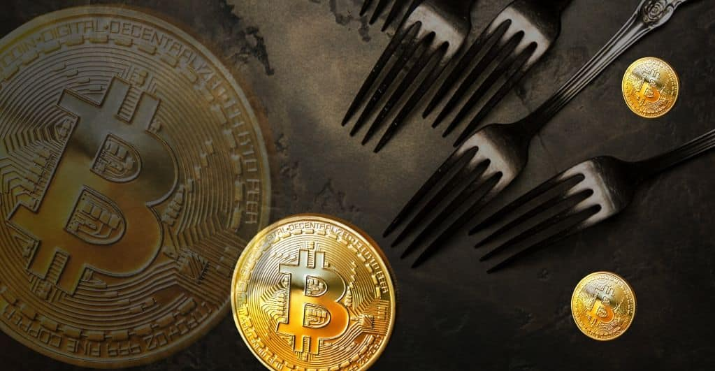 What Are Bitcoin Hard Forks and How Do They Differ From Soft Forks?